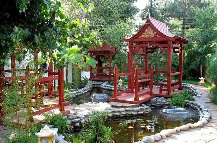jardin-chinois-bassin